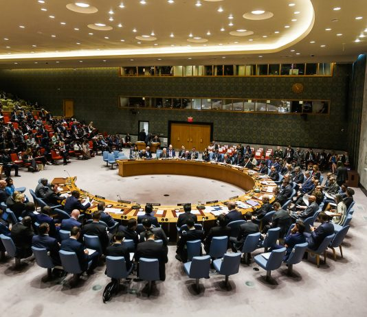 Debates at the UN Security Council Summit 'Reforms in the sphere of UN peacekeeping: implementation and further steps' (Credit: palinchak/Bigstock)