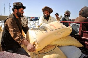Nad e Ali District Centre, wheat seed from the wheat seed distribution program is handed out to local farmers. Image taken in Nad e Ali, Helmand Province, Afghanistan. (Credit: DFID - UK Department for International Development/Flickr).